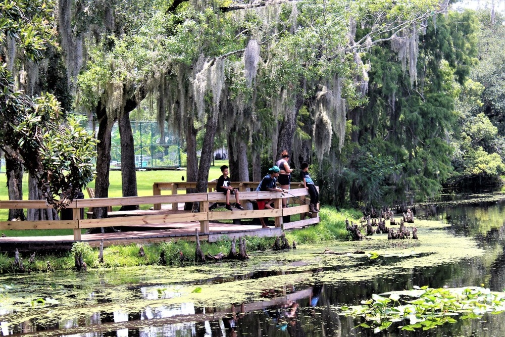 Best Things to Do in Temple Terrace (FL)